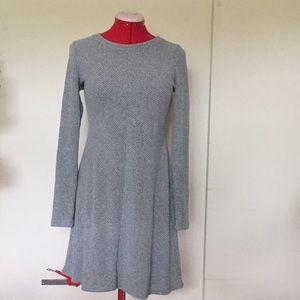 Gap Soft Spun Knit Long Sleeve Swing Dress